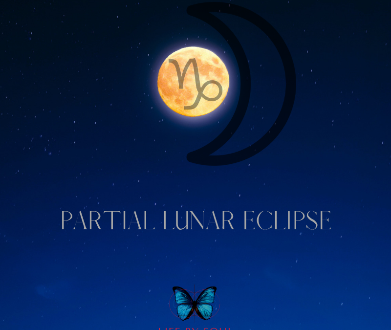The 2019 Capricorn Full Moon + Partial Lunar Eclipse – Catalyst for